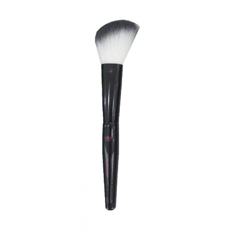 Blush Makeup Brush Pro